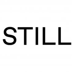 ستيلا